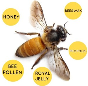 beehiveproducts